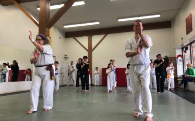 Black Belt Essay | Mas Twila